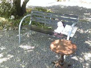 木陰のベンチ.JPG